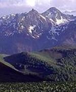 Pyrenee1